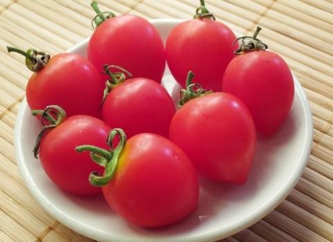 トマトのすすめ♪