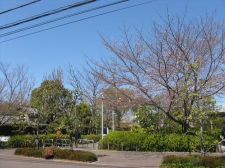 天気の良い日には是非公園の多い大阪府寝屋川市へ~