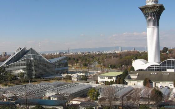 花博記念公園鶴見緑地です