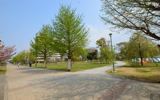 上福岡中央公園!