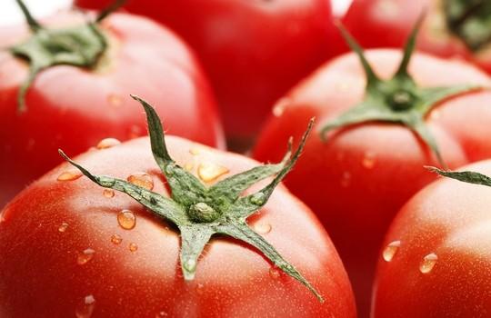 トマト論争(トマトは野菜か果物か)