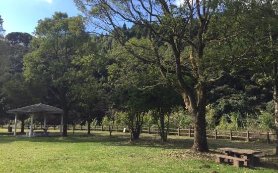 ♪むたさんぽ♪『岩瀬川河川公園(前篇)』野尻町三ケ野山