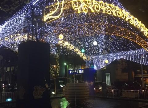 【レジャー】静岡冬の風物詩!10mのビッグツリーイルミネーション!