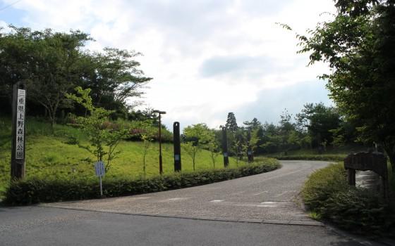 自然の中でリフレッシュ!「三重県上野森林公園」