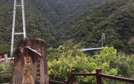 綾の森と酒文化