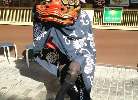 ♥池田市『獅子舞登場』♥